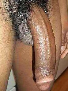 Big Phat Dick For The Ladies Kik Me: SamoaD17 :)