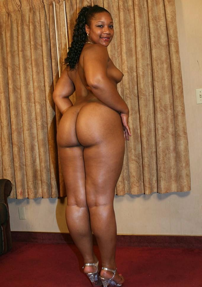 Big Ass Black Bbw Tube
