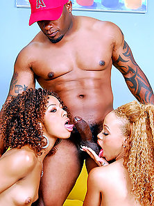 Tiny recruited two fine black chicks that got their pussy drilled hard