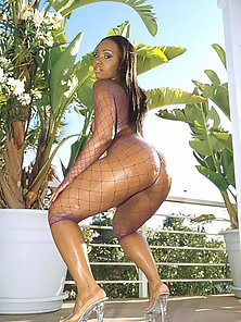 Beautiful black babe in fishnets showing her oiled bubble ass outdoors