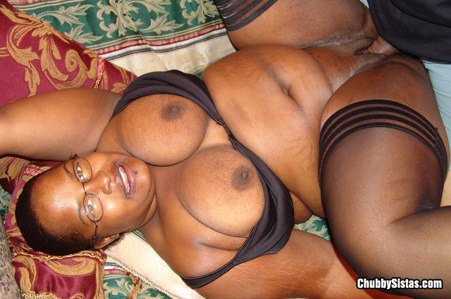 Free ebony shemale video