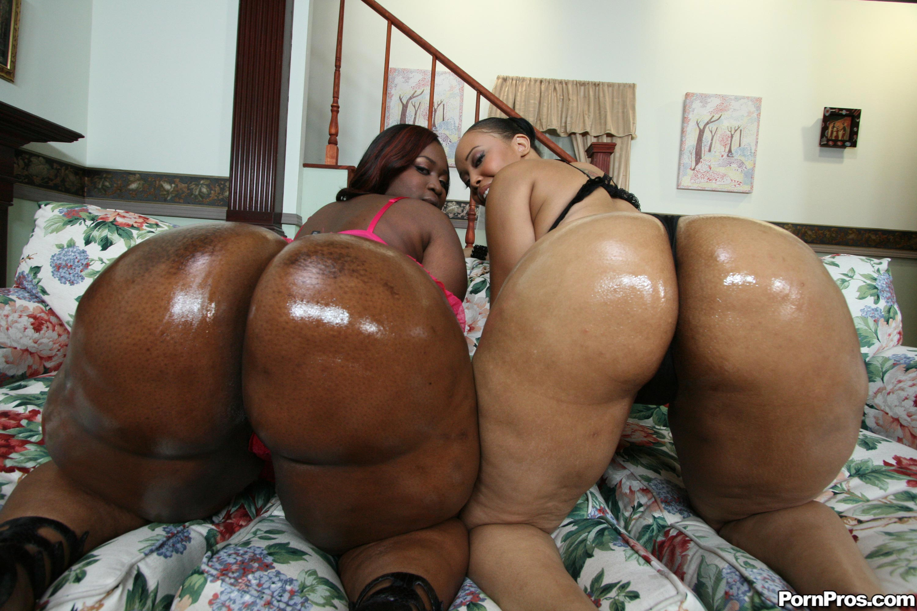 Sexy big booty ebony bbw with fade