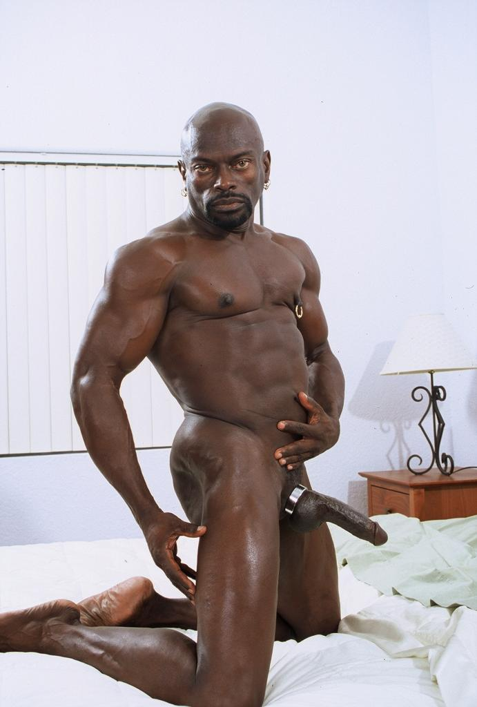 gay black cock on your mind